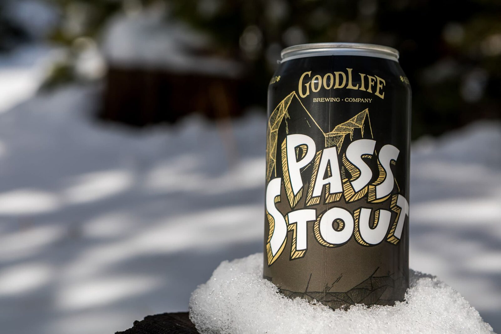 Beer can in the snow